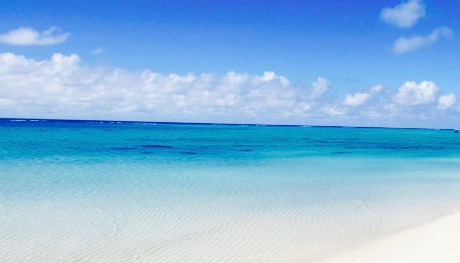 「海藻 健康」の画像検索結果