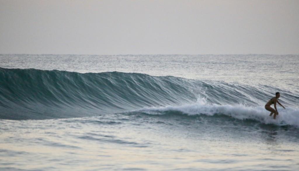 サーフィン 種子島