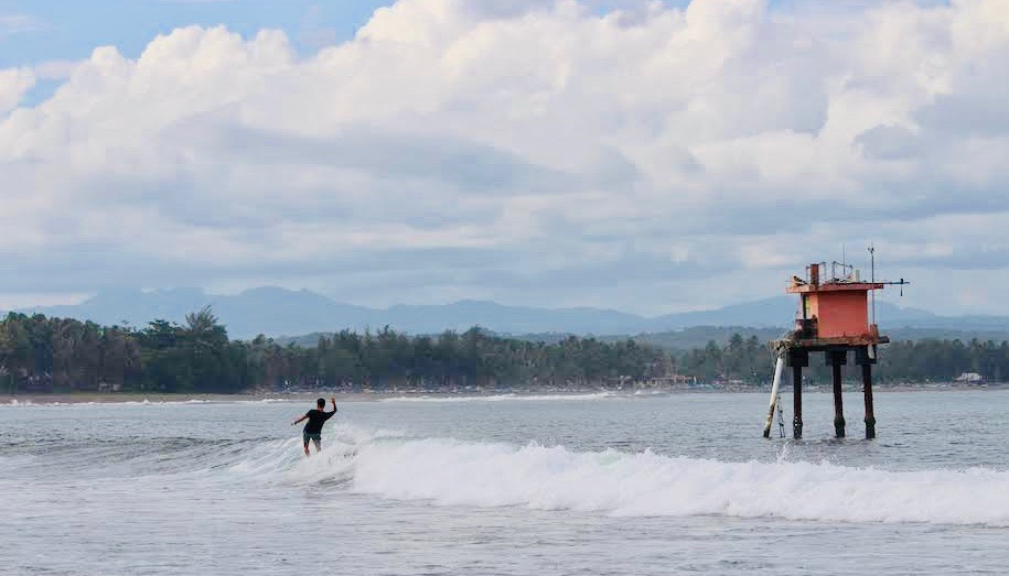 バツカラス サーフィン
