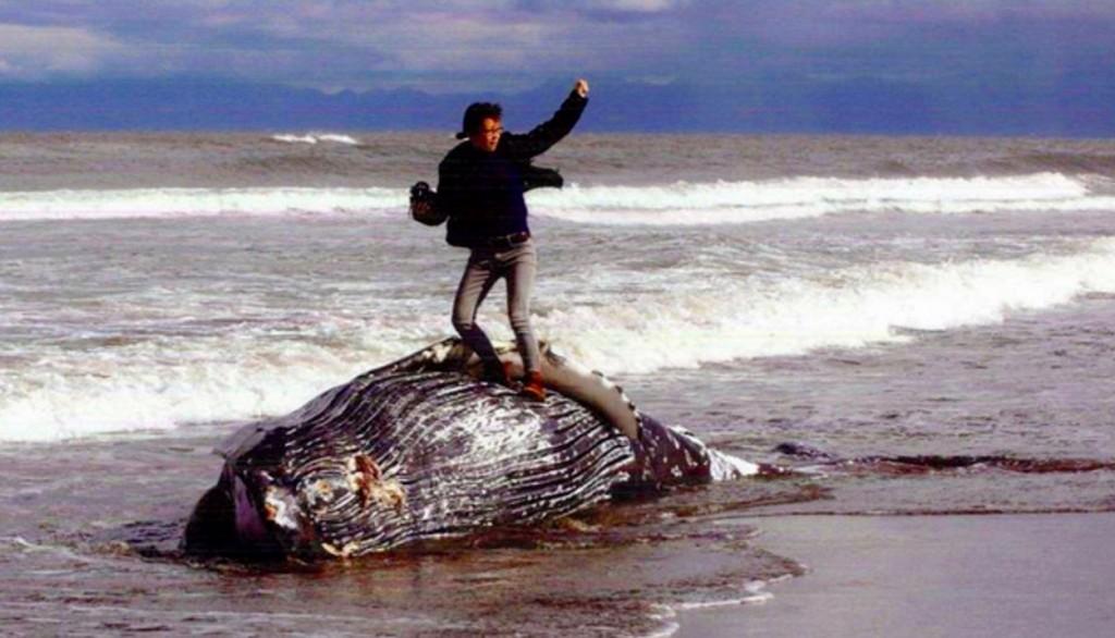 クジラ炎上