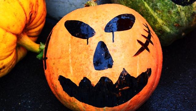 サーフィン  かぼちゃ1