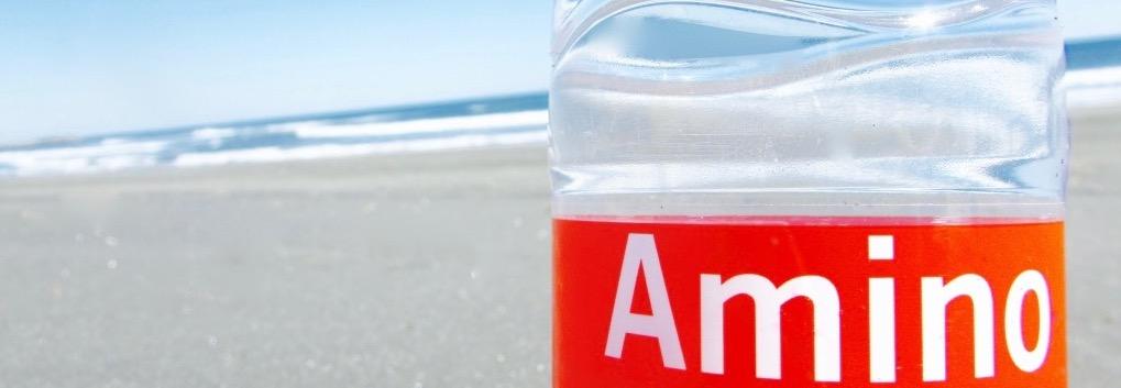 サーフィン アミノ酸