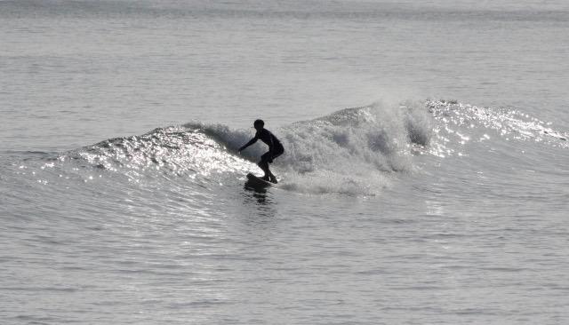 ヨガ サーフィン