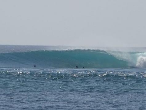 fujisakinanako_surfing
